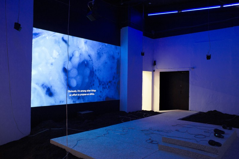 Dominique_Koch_Holobiont_Society_Installation_View