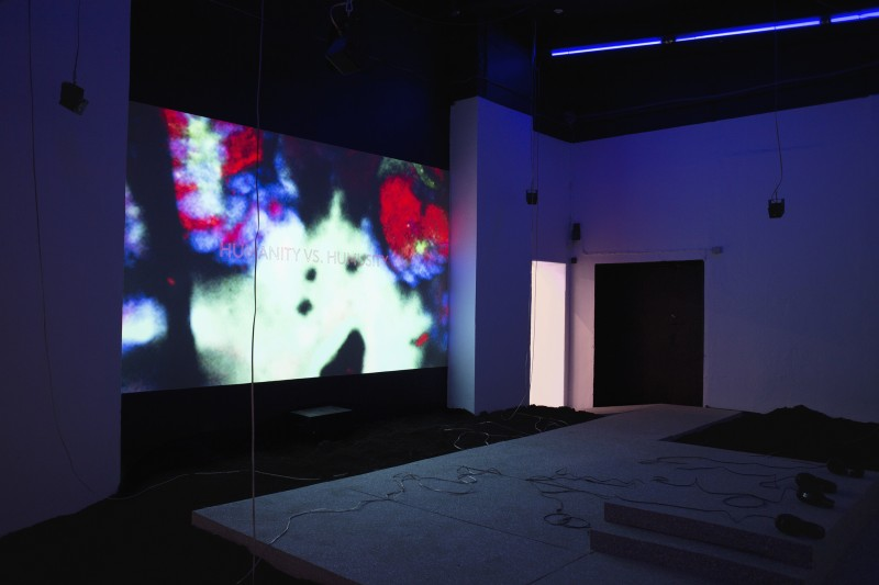 Dominique Koch, Holobiont Society, 2017,  Installation view at EKKM Tallinn